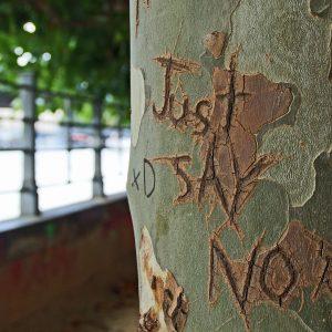 להגיד לא!!! למה זה כל כך קשה לנו